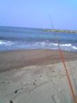 荒浜のキス